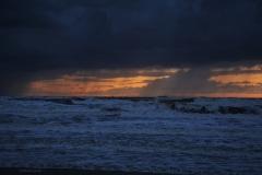 Wilde zee 3