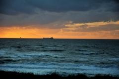 Wilde zee 4
