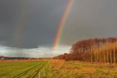 Regenboog.1