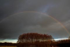 Regenboog.2