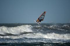 Wilde zee 11