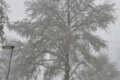 Winterlandschap 6