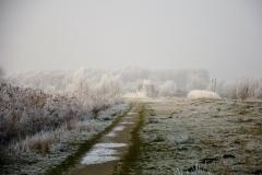 Winterslandschap 2