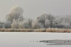 Winterslandschap 3