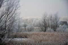 Winterslandschap 4