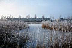 winterslandschap 1